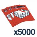 A6 FLYERS 5000